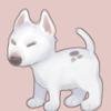 MysticalPoodle's avatar