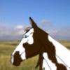 Mysticmares's avatar