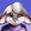 N0vaBun's avatar