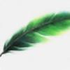 N-T-E's avatar