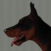 Nadiri95's avatar
