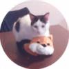 naga-fireball's avatar
