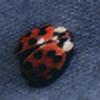 nakedzen's avatar
