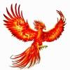 nakulr's avatar