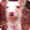 NalaaAdopts's avatar