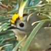 Namisao's avatar
