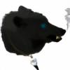 Naomi-Blue's avatar