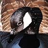 napsterblooky's avatar