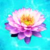 Nariko-Lily's avatar