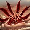 NarutoBeast8906's avatar