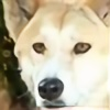 NassieStorm's avatar