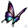 natalievonraven's avatar