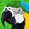 NatanV2's avatar