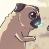natexopher's avatar