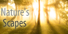 NaturesScapes's avatar