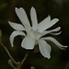 naturfan100's avatar