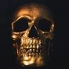 Necronomyx's avatar