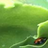 Nelloc's avatar