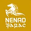 nenadsarac's avatar