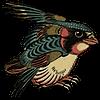 NeochmiaPhaeton's avatar