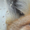 neoseleo's avatar