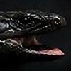 Nero-Egernia's avatar