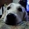 Nessie162's avatar