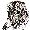 Nethranjali's avatar