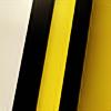 NetuserPro's avatar