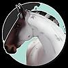 Nifken's avatar