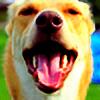 NightBorder16's avatar