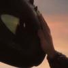 nightfurynate's avatar