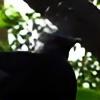 Nightowl103's avatar