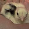 Nightowl223's avatar