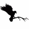 nightrayven's avatar