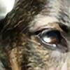 nigiuni's avatar