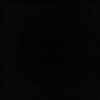 NikeLover3993's avatar