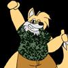 Ninetails2000's avatar
