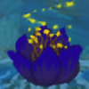 NinjaPenguinCake8's avatar
