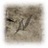 Niwish's avatar