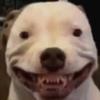 nixnugget's avatar