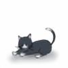 nmaya98's avatar