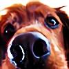 noCka's avatar