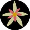 nocti-flora's avatar