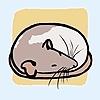 NoctisFox6's avatar