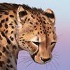 Noctualis's avatar
