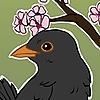 Noirath's avatar