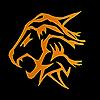 NokamFTR's avatar