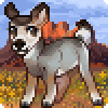 Nopeita's avatar