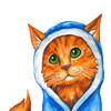 NoreyDragon's avatar